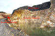 Succession in Carmean Quarry.